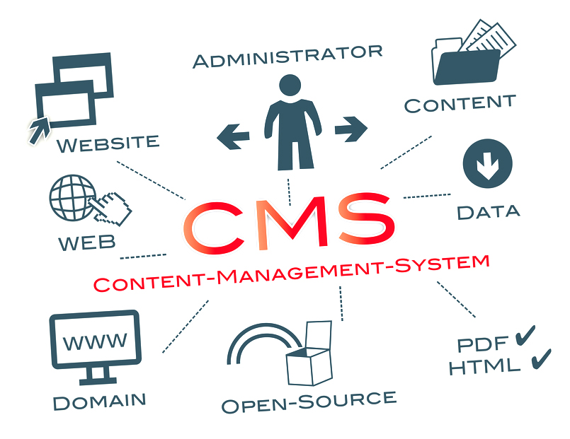 8 top CMS in Social Networking and Dating Website Development